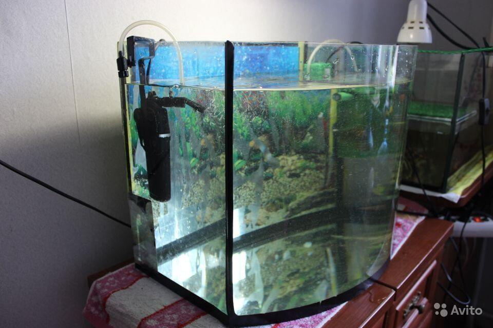 Аквариум 50 литров купить на Зозу.ру - фотография № 3