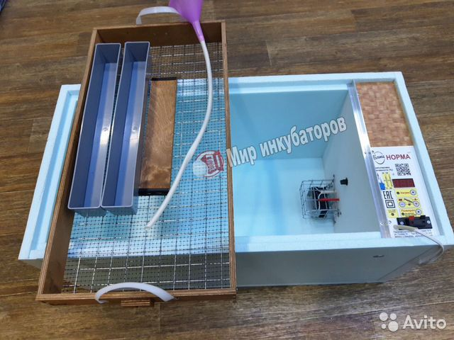 Incubator Blitz The Norm 89226533825 buy 1