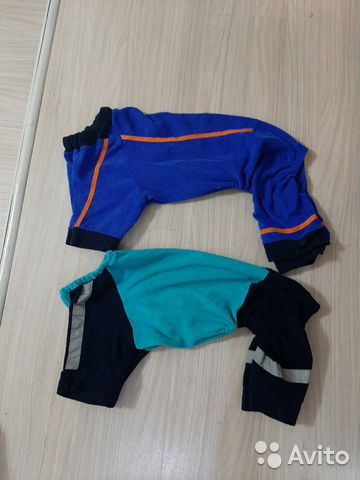 Cargo pants for dogs 89513124141 buy 1