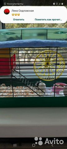 Декоративная мышка  купить 1